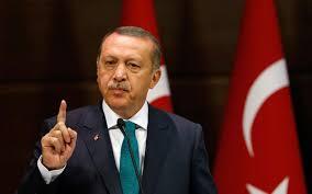 منطقة أردوغان