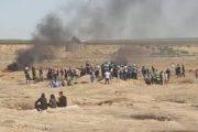 إصابة 206 فلسطينيا برصاص الجيش الإسرائيلي شرقي غزة