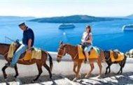 انتقادات لحكومة اليونان لإساءة معاملة الحمير في جزيرة سياحية