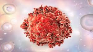 غذاء هام قد يحمي الذكور من سرطان الخصية!
