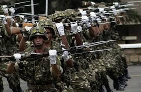 الجيش الجزائري يعلن مقتل مسلحين 2 في مدينة عين الدفلى غرب البلاد