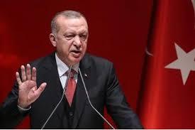 أردوغان يقول القوى العالمية لم تدعم بعد