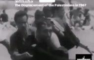 من الآم الشعب الفلسطيني فيديو نادر ومؤلم اثناء عبور نهر الاردن خلال التهجير 1967