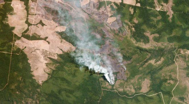 حرائق غابات الأمازون: ما الذي يمكن أن تسببه حرائق غير مسبوقة منذ عشر سنوات؟